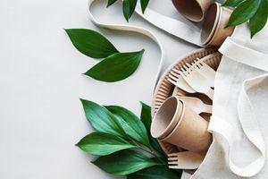 4 habitudes pour une vie plus éco-responsable